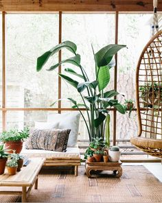 Add plants to your home | follow @shophesby for more gypset boho modern lifestyle + interior inspiration