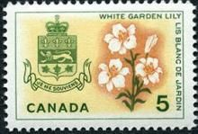 Canada Stamp -   (1964) Coat of Arms and Provincial flowers - Quebec: White Garden Lily