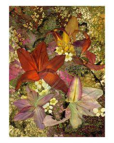 Lilies - Pressed Flower Art
