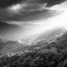 DESCENDING #LIGHT by Tillmann Konrad #Photocircle #nofilter #fineartphotography from #Cuba #LatinAmerica #Caribbean #blackandwhite  #landscapephotography #forest #woods #mountains #clouds #sunrays #shadow #picoftheday  #Closethecircle - if you buy this photo Tillmann Konrad and Photocircle #donate 8% to provide #families in #Guatemala with clean #drinkingwater