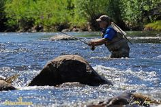 Fly-fishing the Yampa River in Steamboat Springs, Coloardo