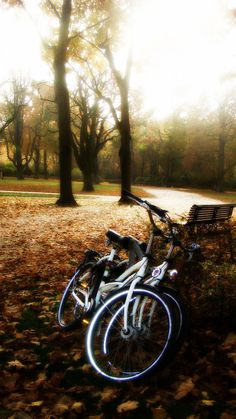 Brussels, Belgium: A pleasant day for a bike ride...