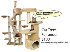 Cat trees for under $100