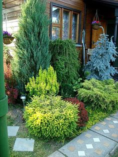 Most Design Ideas Side Yard Garden Design Ideas Pictures, And Inspiration – Modern House Evergreen Landscape, Evergreen Garden, Amazing Gardens, Beautiful Gardens, Landscape Design, Garden Design, Side Yard Landscaping, Landscaping Ideas, Garden Planning