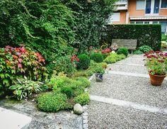 Plants, Sidewalk