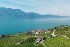 7 Incredible Places to Visit If You Love Wine - Lavaux Vineyard Terraces via @MyDomaine