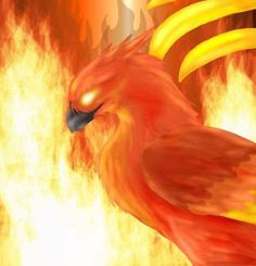 10 more Pins for your phoenix and fire art board - lmontague422@gmail.com - Gmail
