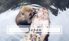 Japan travel tips and advice