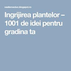 Ingrijirea plantelor – 1001 de idei pentru gradina ta Gardening, Calendar, Container Gardening, Plant, Garten, Lawn And Garden, Garden, Square Foot Gardening, Garden Care