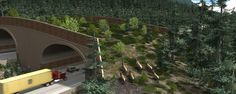 The Washington State Department of Transportation today announced the state's first wildlife bridge, which will be built over a stretch of I-90 near Snoqualmie Pass. (Thank you , Renee!)