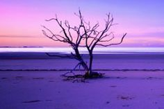 I saw Peter Lik's gallery in Miami and his photographs are always breathtakingly beautiful and inspirational.