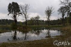 De Boekhorst in het groen ; Weerspiegeling Boekhorst | foto 4 http://blog.qdraw.nl/gelderland/de-boekhorst-in-het-groen/