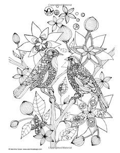 creative coloring birds art activity pages to relax and enjoy | Wild Animals Kids Coloring Pages Free Colouring Pictures ...