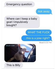 #FunnyTexts About A Baby Goat
