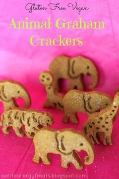 Gluten Free Vegan Animal Graham Crackers petiteallergytreats.blogspot.com  Your kids will  go crackers for these!  #glutenfree, #vegan, #gra...