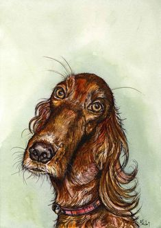 A Little Affection - Irish Setter Art Dog Print Elle Wilson