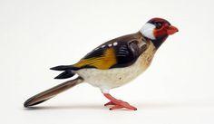 Costantini, Birds