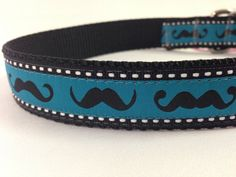 This would be cool for Movember!!!mustache dog collar/ boys dog collar/ ribbon dog collar/ adjustable dog collar on Etsy, $17.99