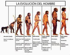 La evolución del Hombre : La cronología acerca del origen y evolución humana (Hominización) aun no es precisa. Existen numerosas clasifi...