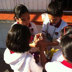 """Los alumnos elaboran una piñata en equipo, a partir del trabajo con el texto """"La piñata"""" los niños en grupo reunieron los materiales y elaboraron una piñata con distintos materiales, el trabajo colaborativo es importante porque pone de manifiesto el respeto a las opiniones de los demás y además sus propias visiones, de esta manera los alumnos diversifican sus concepciones sobre el arte y enriquecen su cultura."""