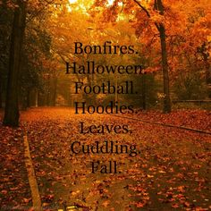A few things we all love about the Fall Season!