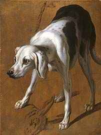 François Desportes (1661–1743) Study of a Pointer. Oil on paper prepared with a brown oil wash,