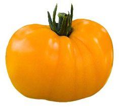 Heirloom Tomato Seeds, Tomatoes, Non-GMO, Untreated, Organic Seed – Sandia Seed Company Heirloom Tomato Seeds, Heirloom Tomatoes, Potted Fruit Trees, Types Of Lettuce, Seed Catalogs, Organic Seeds, Miniature Food, Growing Vegetables, Orange Color