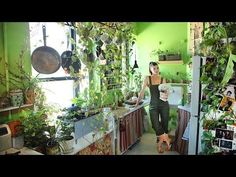 Growing A Jungle In My New York Apartment - YouTube