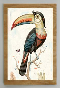 Beak of the century. Approximately 9 inches by 13 inches, and usually a 1 inch border.