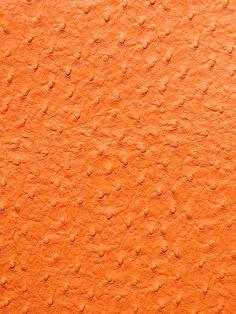 EMU ORANGE #animal-skins #orange-rust #vinyl-faux-leather
