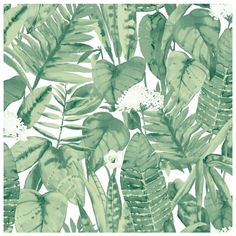 Tempaper Tropical Self-Adhesive Vinyl Wallpaper (€89) ❤ liked on Polyvore featuring home, home decor, wallpaper, backgrounds, decor, jungle green, tempaper, green home decor, green wallpaper and tropical jungle wallpaper