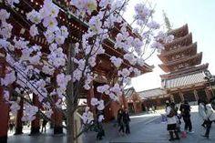 """Résultat de recherche d'images pour """"japon ville"""""""
