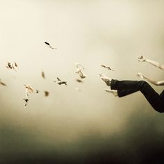 I Was Falling High by Martin Stranka on Art Limited