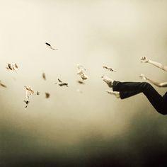 I Was Falling High, photographie de Martin Stranka