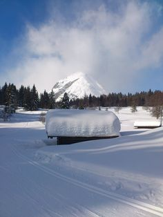 cross-country skiing track in #Leutasch #Tirol