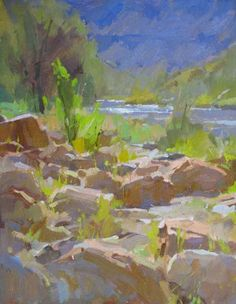 Creekbed by Colin Page