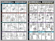 Dumbbell Workout 2-Poster Professional Fitness Wall Chart Combo - Fitnus Posters Inc.