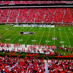 Home is between the hedges. Go Dawgs!