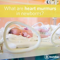 Heart murmurs can indicate underlying health issues. Learn what it can mean if a murmur is present at birth.