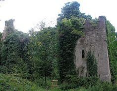 Castle Caldwell on the Lower Lough Erne was built between 1612 and Church Of Ireland, Dublin City, Castle Ruins, Forest Park, Abandoned Mansions, Nature Reserve, Ireland Travel, Kirchen, Northern Ireland