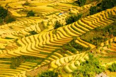 More details at http://www.travelsapa.com/hmong-homestay-package/