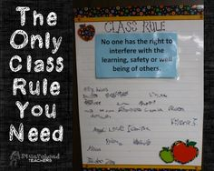 Only class rule you need Classroom Procedures, Classroom Behavior, Classroom Displays, Future Classroom, School Classroom, Classroom Organization, Classroom Ideas, Classroom Solutions, Classroom Signs