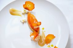 in the kitchen x persimmon, the star