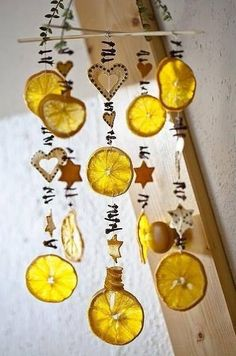 Dried oranges to decorate the sukkah