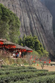 Tea house at a river bend, Nanping, Fujian, China