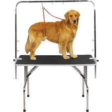 22 best great dog grooming salon ideas and set ups images on overhead pet grooming arm solutioingenieria Image collections