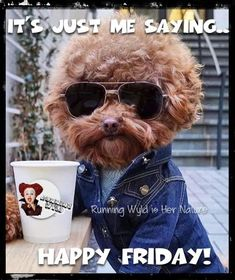 Just Me Saying Happy Friday...I love it M, stop by anytime,and love the hair too! xx ;))