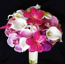 Plumeria, orchids and calla lilies?