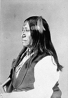 Spotted Tail (Tshin-tah-las-Kah), a Brule Sioux chief;            half-length, seated, profile. Photographed by Alexander            Gardner, 1872.     American Indian Select List number 125.