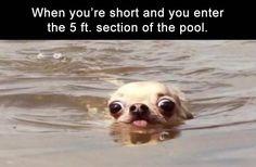 Morning Funny Memes 36 Pics